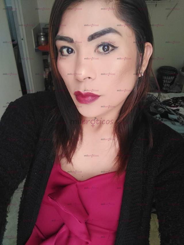 3114661169 - TRANS VERSÁTIL SARITA DE PASO dispuesta